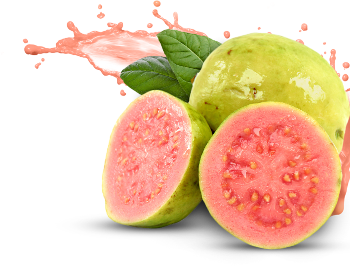 The Top 10 Health Benefits of Guava — Coconet