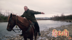Fresh 7 - STAN WALKER