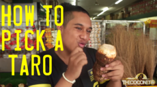 How To: Pick a Taro