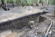 Tongan site dates oldest in Polynesia