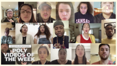 #CocoLockdown - Best Poly videos of the Week - Part2