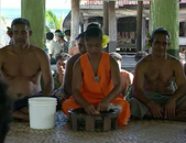 Kava - The Drink of the Gods